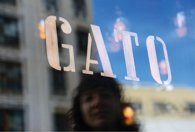 GATO_blog7