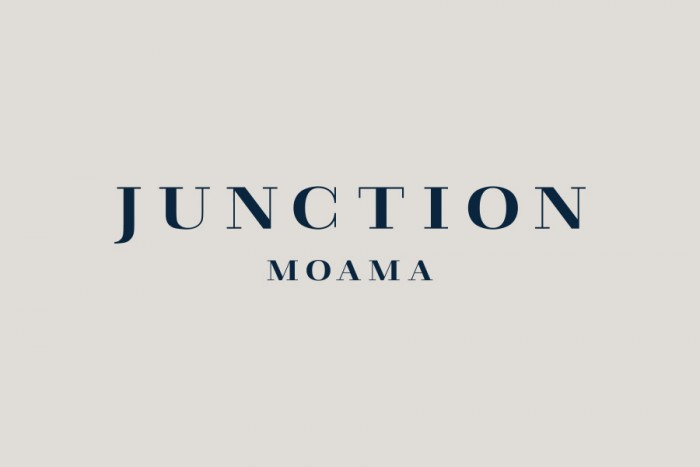 15-Junction-Moama-Logotype-Seesaw-on-BPO