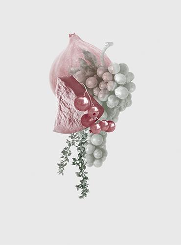 Firenze-Illustrationen-SarahLeDonne-Hoch-370x500px-Wein11