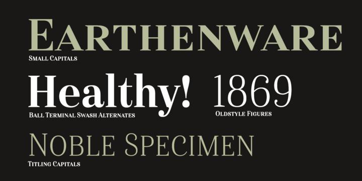 Haboro serif font typeface typefamily