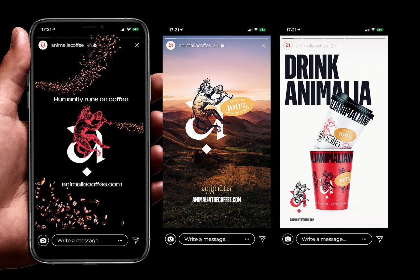 Animalia coffee branding and packaging design by Matheus Cornelius